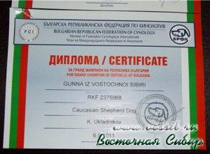 Гунна из Восточной Сибири