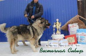Лав Стори из Восточной Сибири