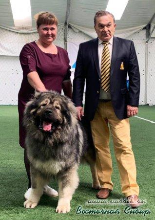 13 и 14.04.2019  г. Бишкек, Кыргызстан прошли Интернациональные выставки собак 'СОЗВЕЗДИЕ АЗИИ-1 и 2